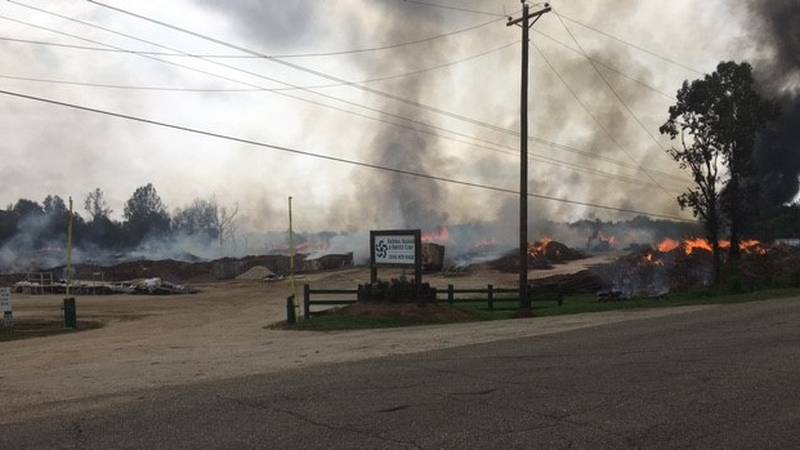 A fire at National Salvage and Services Corp. in Burnsville burned overnight.