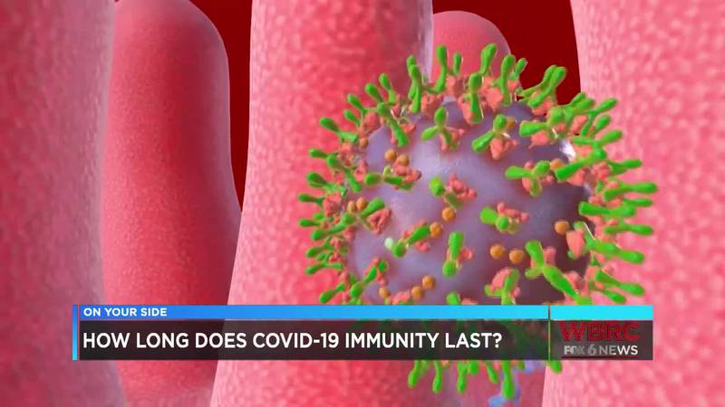 How long does immunity to COVID-19 last?