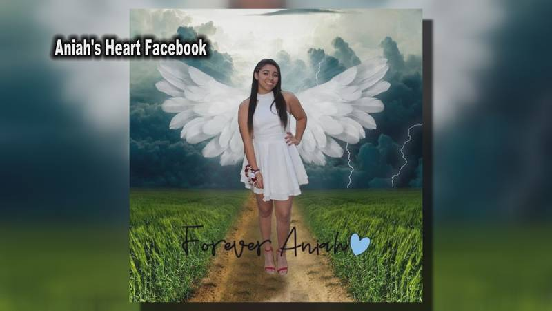 Aniah Blanchard's mother launches non-profit to help families searching for missing loved ones