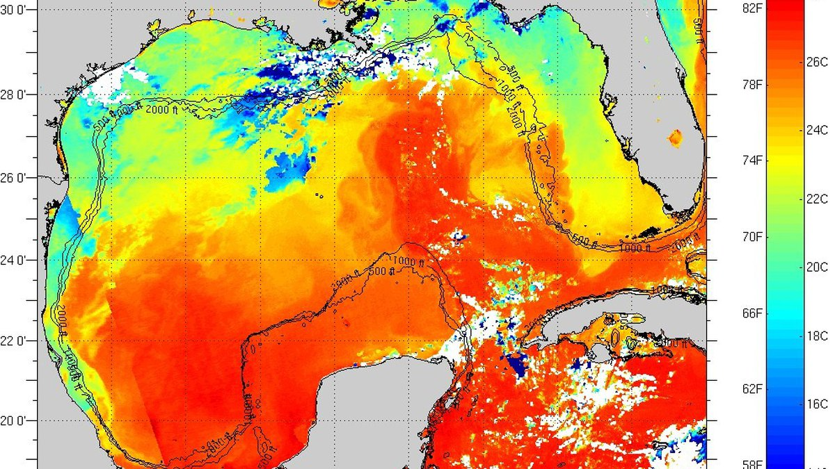 Sea surface temperatures in the Gulf of Mexico as of April 8th.