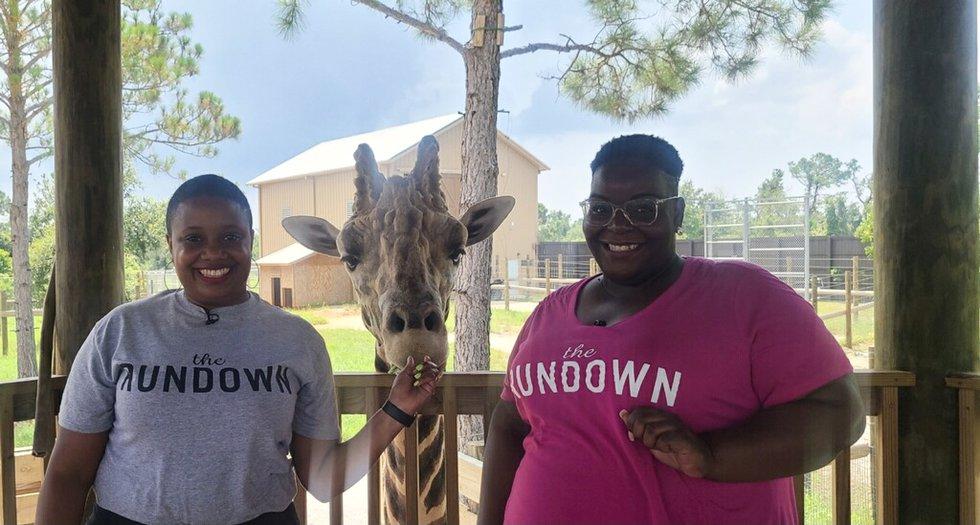 The Rundown takes the Alabama Gulf Coast Zoo