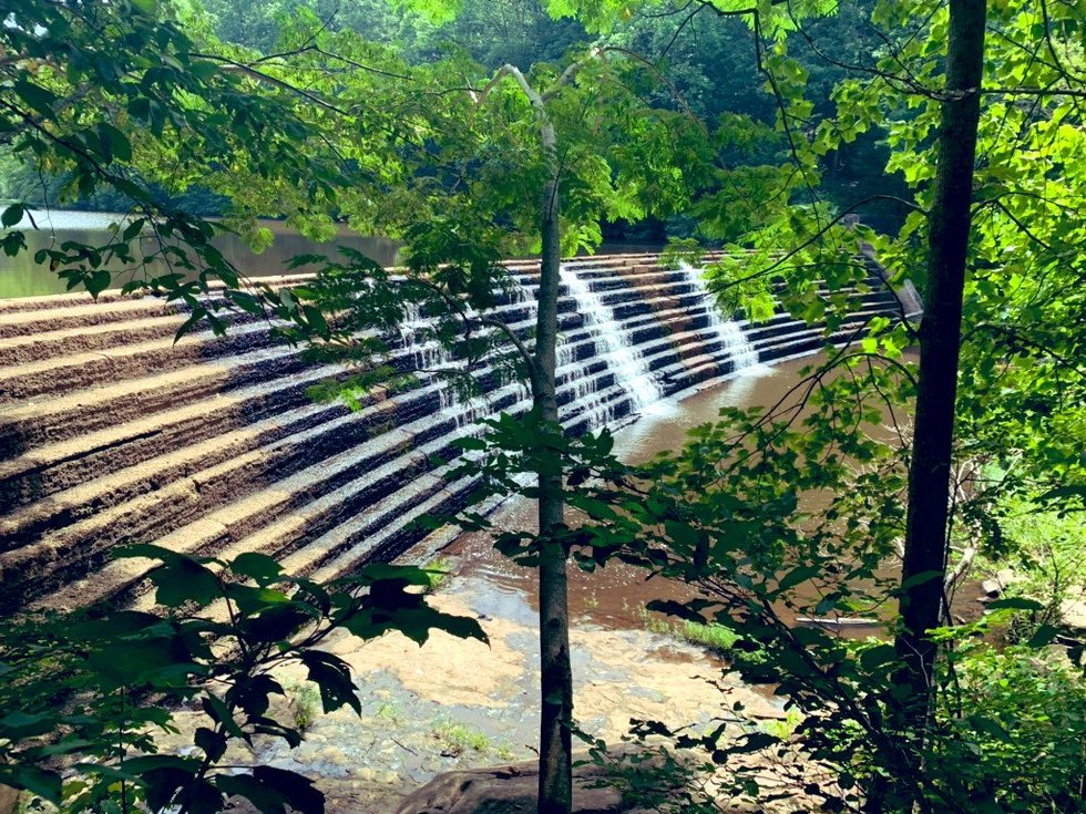 The Brushy Lake damn in Bankhead National Forest has helped change the ecosystem, increasing...