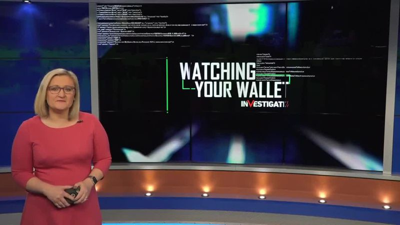 Watching Your Wallet: Helping your parents