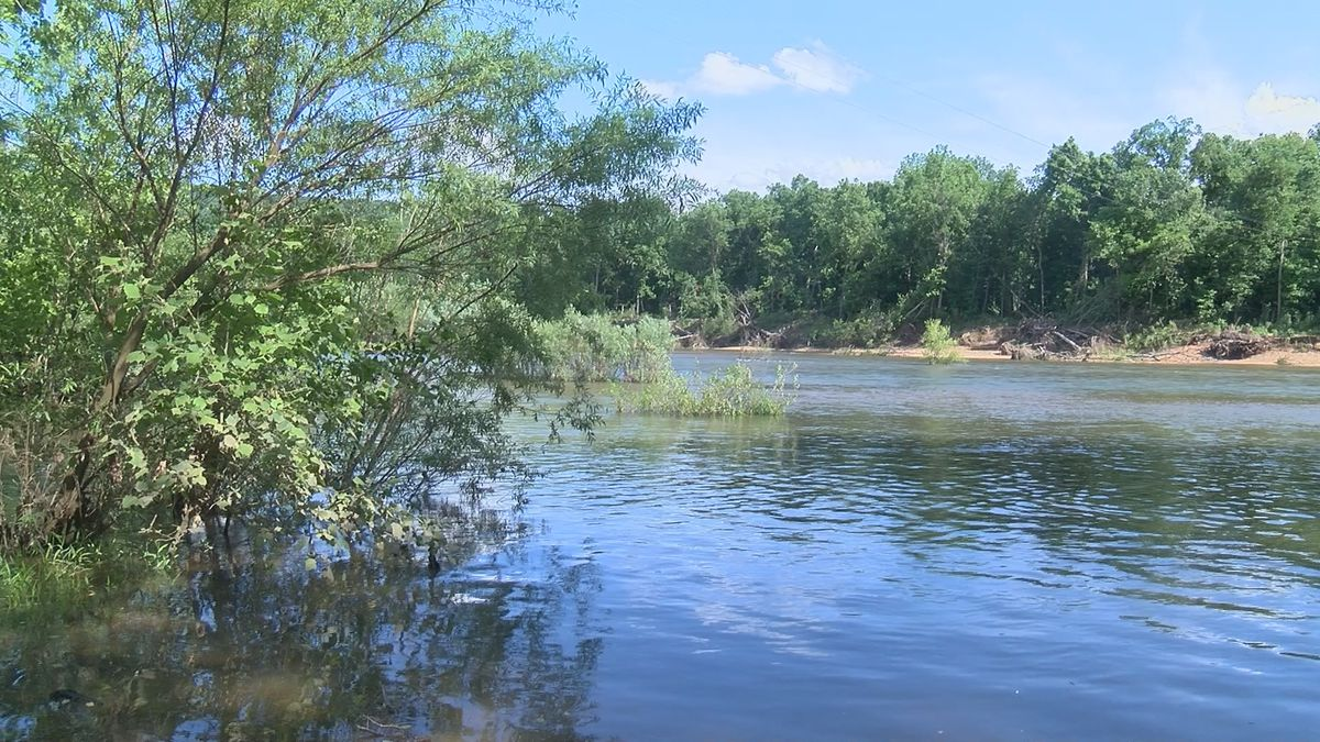 Heartland boy saves family members from drowning