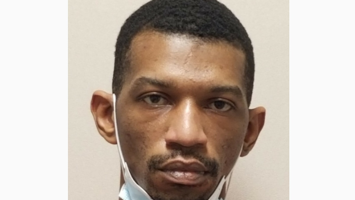 Auburn man arrested, charged with rape and sodomy