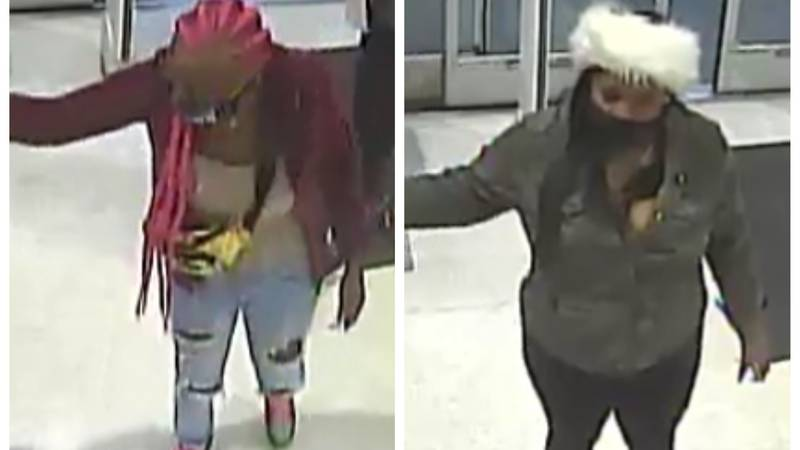 Two suspects wanted in Opelika wanted for theft at Dick's Sporting Goods