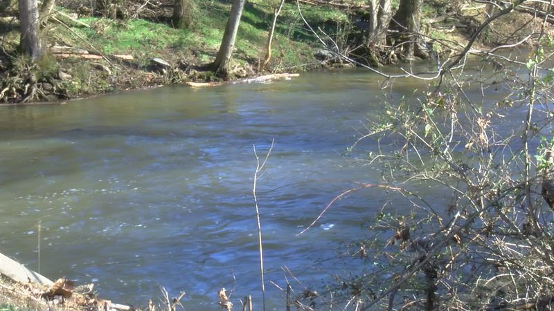 A woman was killed after she and her car were swept away by floodwaters in Lauderdale County.
