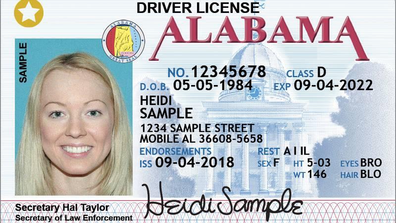 AL sample driver license for an adult