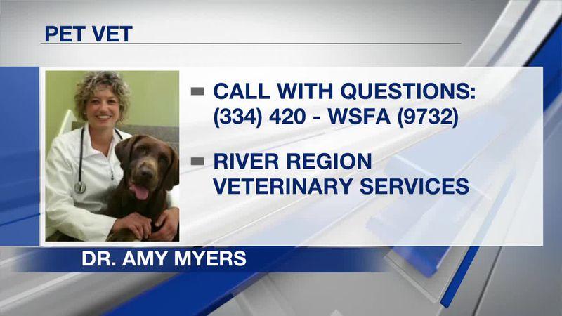 Pet Vet with Dr. Amy Myers-Part 1