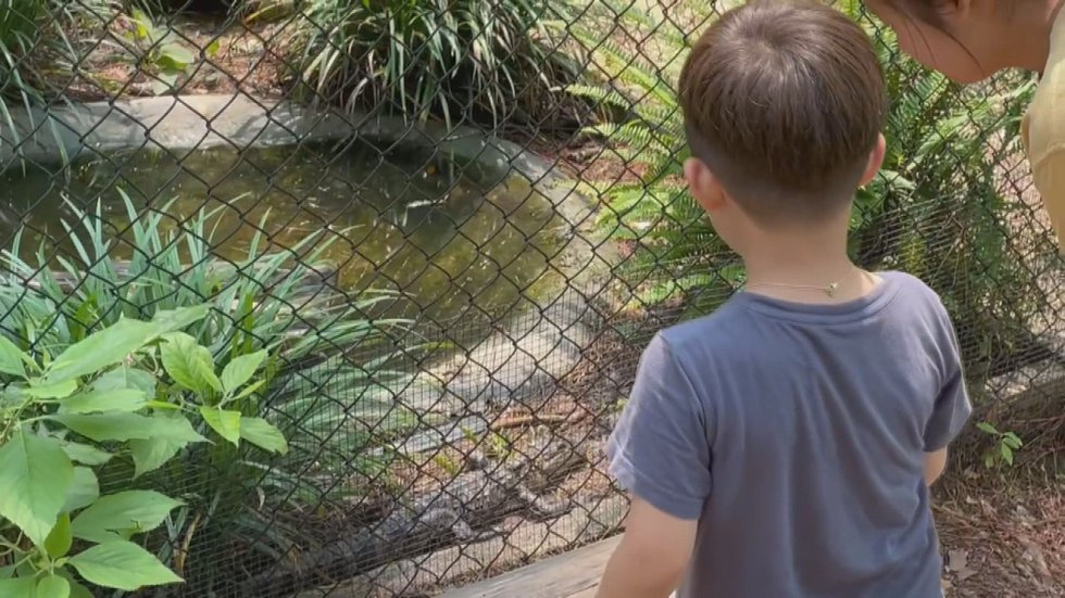 The Kreher Preserve and Nature Center offers several summer programs for both children and...