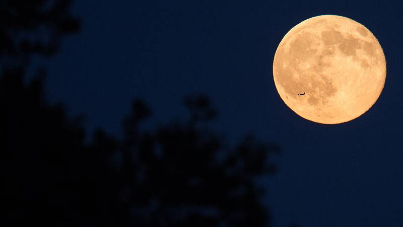 A plane passes in front of a full moon in Arlington, Virginia.