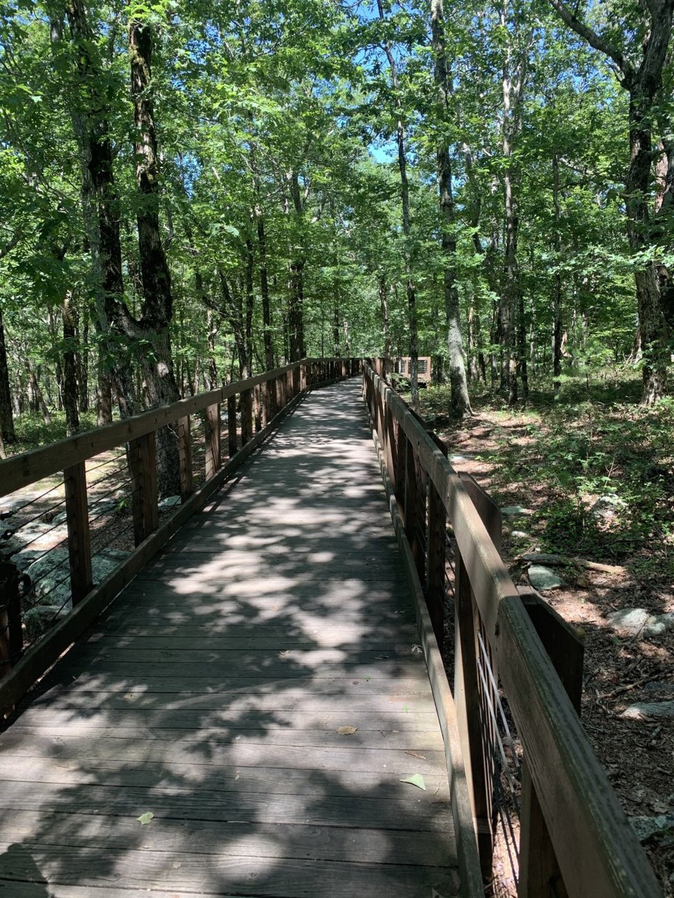 Bald Rock Boardwalk was built more than 25 years ago to give everyone a chance to enjoy the...