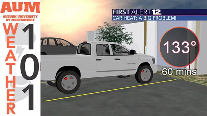 Weather 101: Cars and heat - a potentially fatal combination!