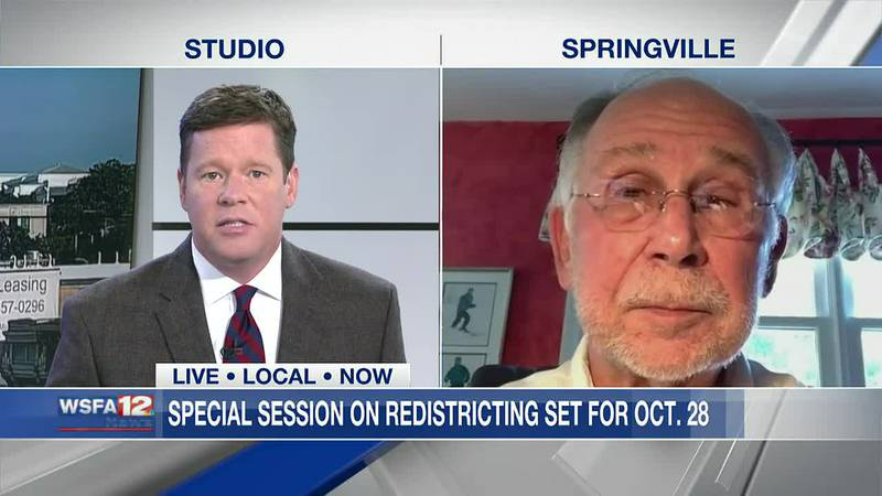 Sen. McClendon discusses upcoming redistricting special session
