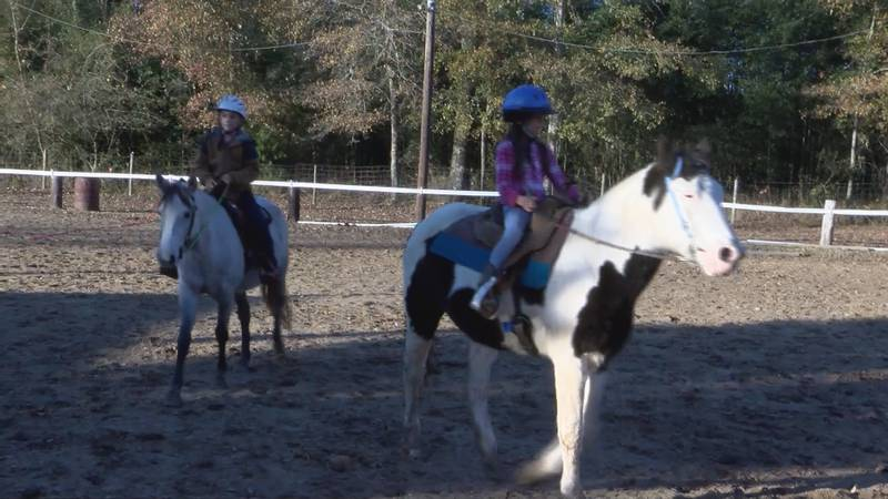 Therapeutic Riding of Tuscaloosa, or TROT, is dedicated to providing the experience of a...